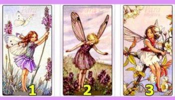 Выбранная фея может раскрыть вашу личность