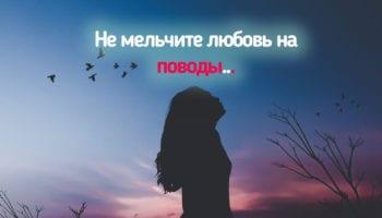 Не мельчите любовь на поводы…
