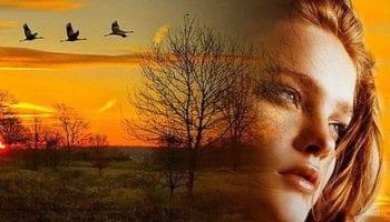 «Мне нравятся люди, которые «живы»» — живое стихотворение Алены Васильченко