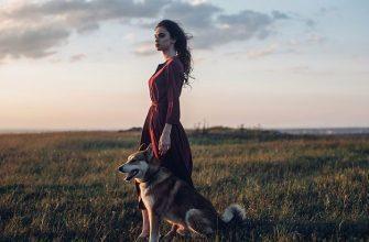 Женщина, которую любили меньше, чем собаку